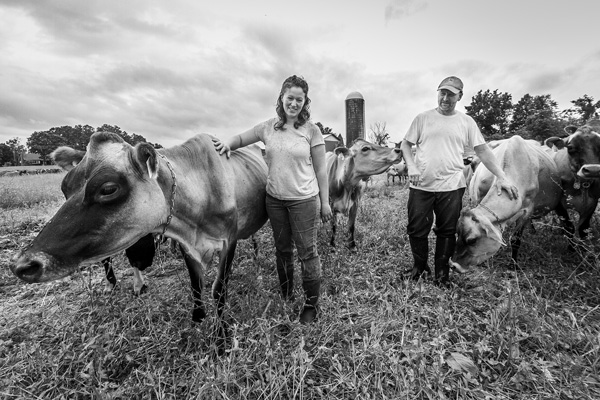 Samantha and Chris Kemnah walk among the cows at Clover Bliss Farm, their 2-year-old organic, grass-fed dairy operation in Argyle, N.Y. Joan Lentini photos