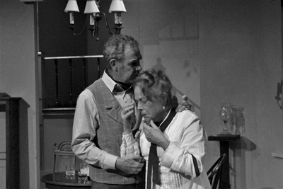 "Nigel Gore and Christine Decker appear in last year's production of Eugene O'Neill's ""Long Day's Journey Into Night."" Erika Floriani photo/courtesy Oldcastle Theatre Co."
